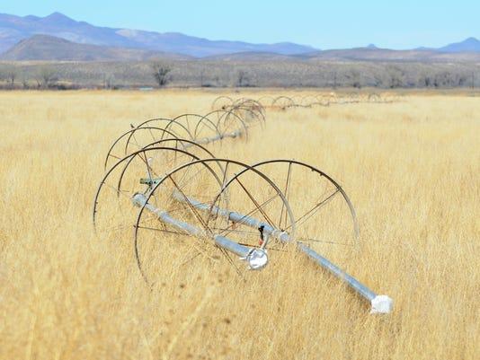 -Sprinklers in dry grass.jpg_20150331.jpg