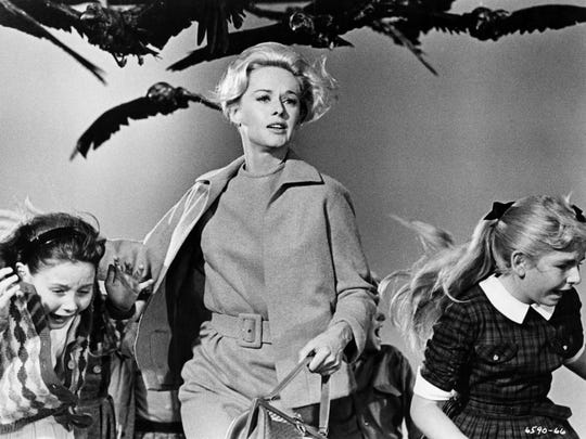 "A birdemic of an artful kind occurs when Tippi Hedren is terrorized in ""The Birds."""