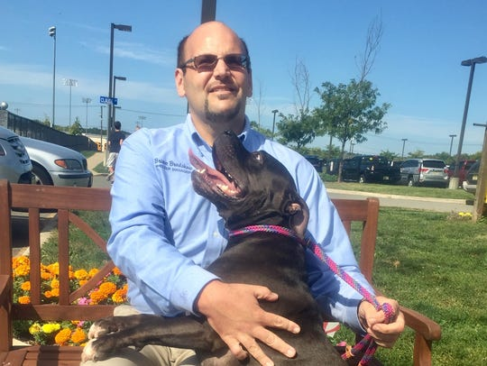 Blackjack, a 3-year-old pit bull, is available for