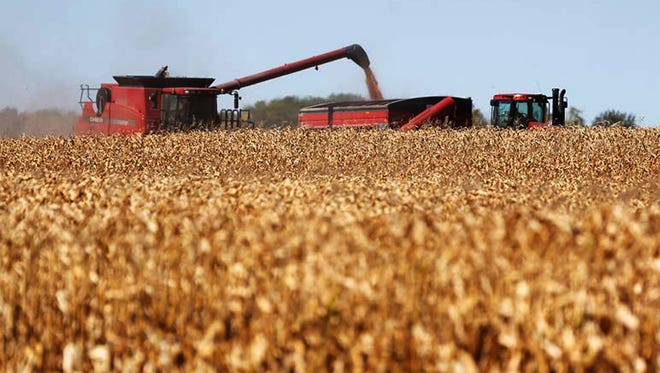 FILE - In this Oct. 1, 2013 file photo, corn flows from a combine into a grain wagon as harvest workers move through a cornfield on a farm in Aberdeen, S.D. (AP Photo/Aberdeen American News, John Davis, File)