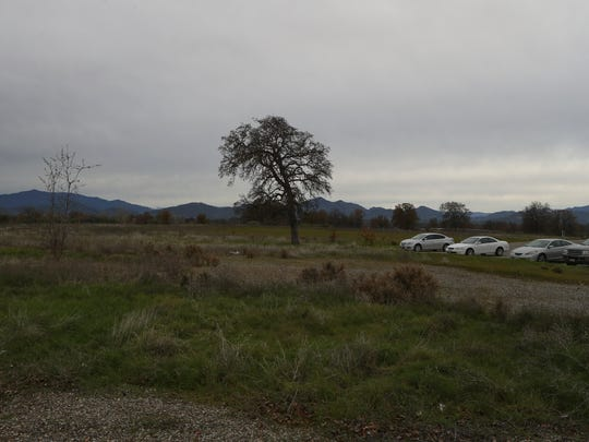 This land at 5174 and 5184 Caterpillar Road is the proposed site for a new hotel.