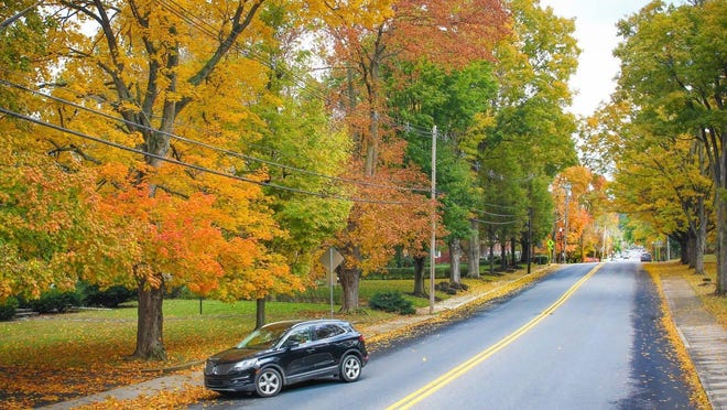 Fall foliage is pictured here on Clayton Ave. in Waynesboro. FILE PHOTO/ THE RECORD HERALD