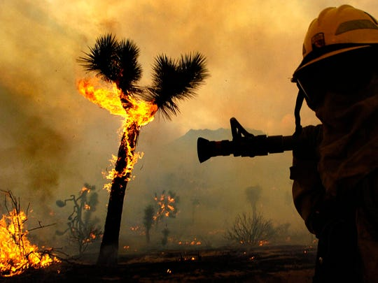 California Department of Forestry firefighters from Riverside County battle the lightning-sparked Covington fire inside Joshua Tree National Park near Yucca Valley in 2006.