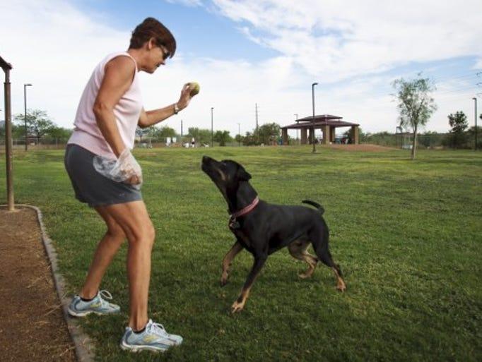 Desert Vista Dog Park