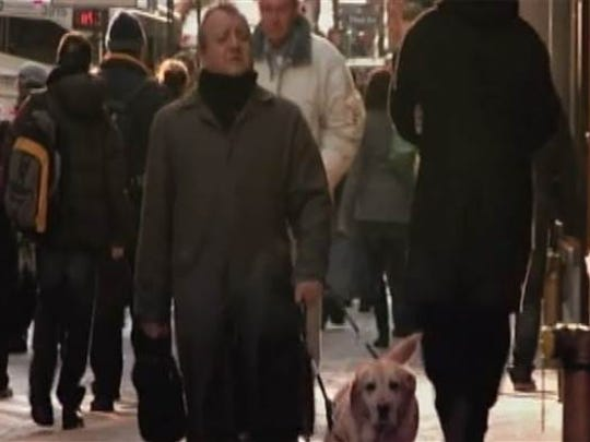 Dog Walks Down Miles Train