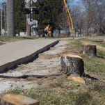 A tree stump lines the sidewalk of First Avenue near the railroad tracks on Tuesday, March 31, 2015.