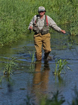 Chris Wasta of Decorah wades upstream as he fishes the South Pine Creek, a northeast Iowa trout stream, in 2010.