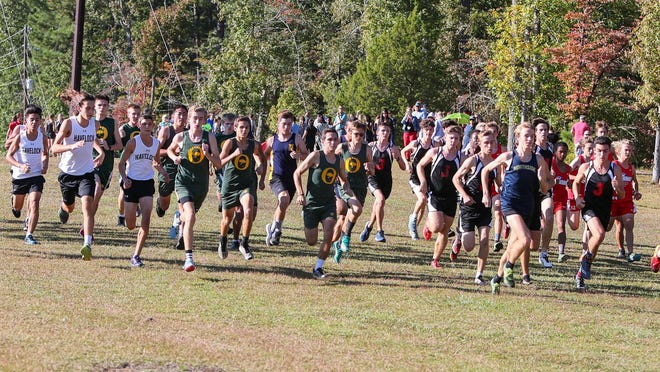 The 2020 high school cross country regular season will start Nov. 16.