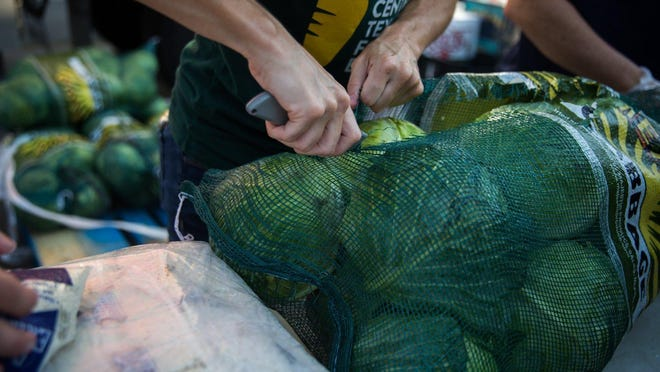 A Central Texas Food Bank employee is shown last year opening a bag of cabbage at a mobile food pantry in Kyle. The state has proposed cutting the grant funding used by food banks across the state to obtain fresh produce for hungry families.
