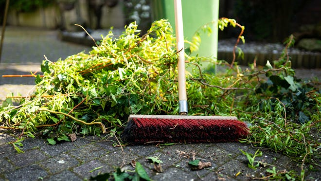 Here's how to clean up your home and yard after a storm