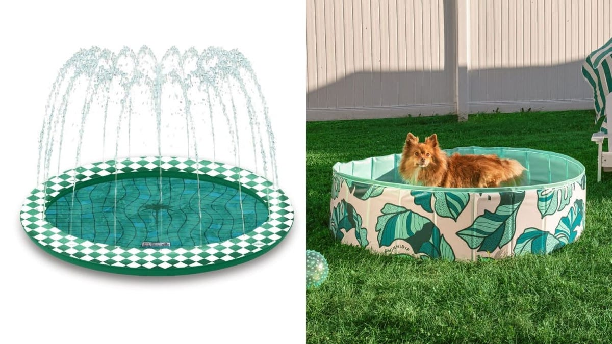 With one of these dog swimming pools, a hot pup can cool off fast