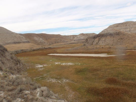 A typical coulee which Mina says is a gold mine for