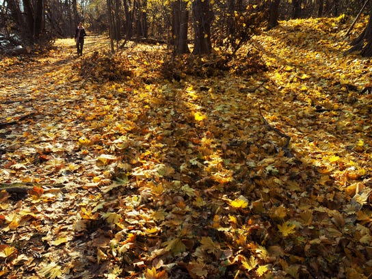 The trail at Dennings Point in Beacon talks walkers