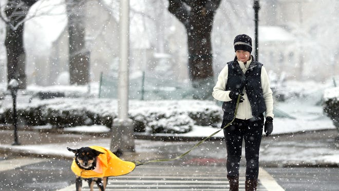 Stacy Calder walks her dog Dakota around the Green as Morris County woke up to snow Friday morning, the  National Weather Service issuing a Winter Weather Advisory for 1 to 3 inches of snow . February 5, 2016, Morristown, NJ.