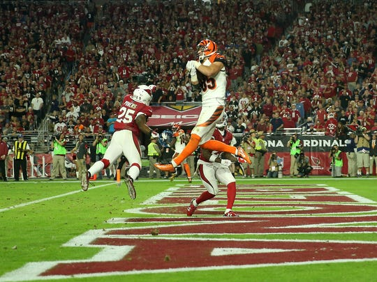 Cincinnati Bengals tight end Tyler Eifert (85) catches a touchdown pass in the fourth quarter during Week 11 NFL game between the Cincinnati Bengals and Arizona Cardinals, Sunday, Nov. 22, 2015, at University of Phoenix Stadium in Glendale, Ariz.