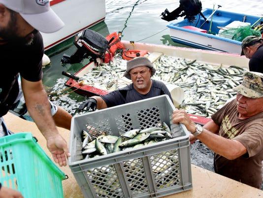 636425021904160245-Net-fishermen-01.jpg