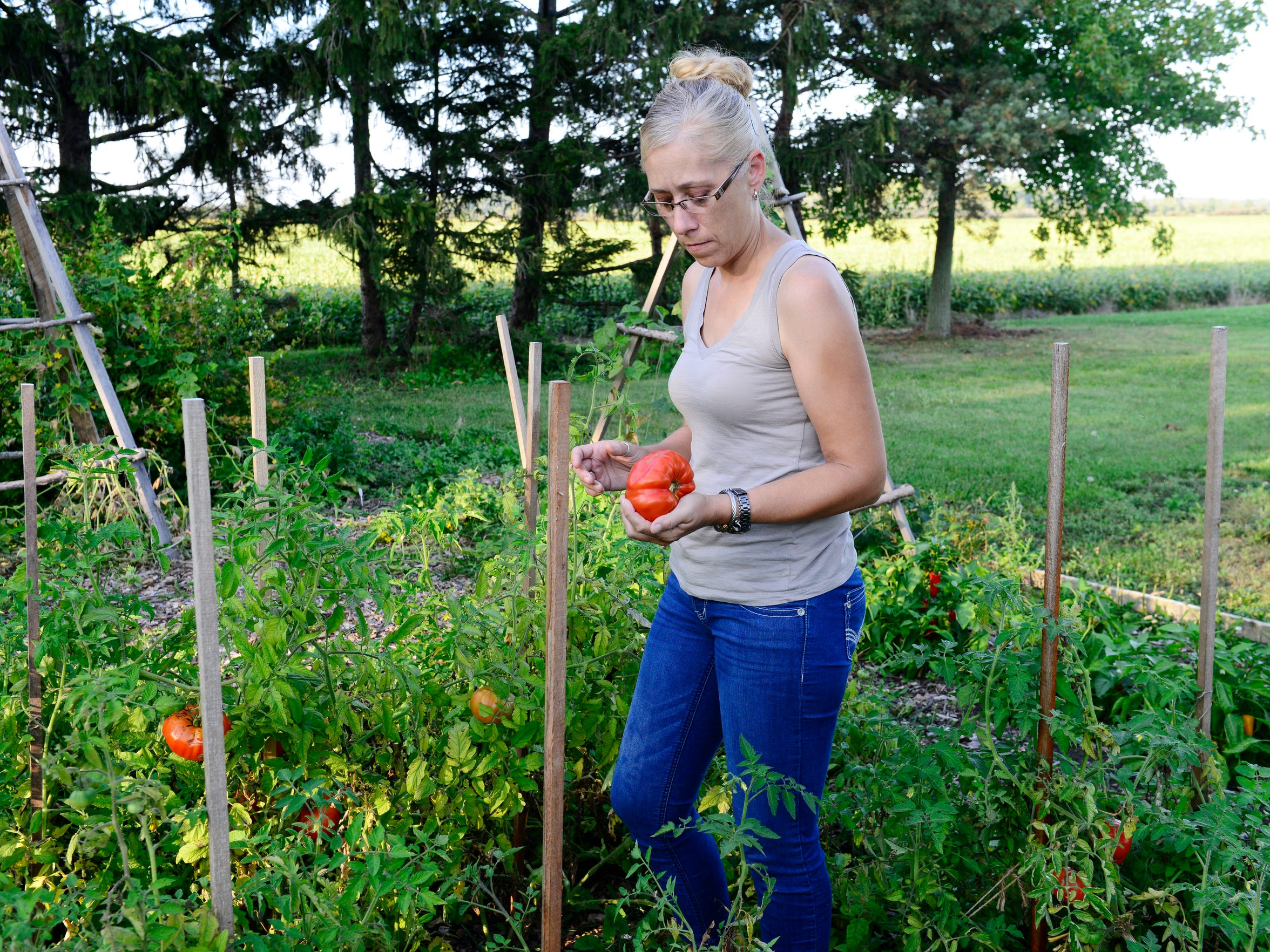 Angel Wadsworth picks a non-GMO tomato she grew in her backyard. She does not drink the water because of health concerns over contaminants that are in the residual sludge being dumped at the nearby Rocky Ridge Development LLC quarry. She still uses the well water for bathing, dishwashing and to give to the animals to drink.