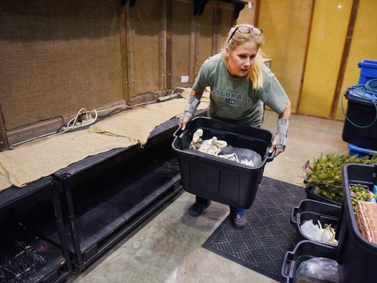 Pat Cudron, owner of Wood Shed, preps for the Autumn Festival show Thursday, Oct. 26, at the Sioux Falls Arena. Cudron said her and her husband Russ have been attending the festival at the arena for 32 years.