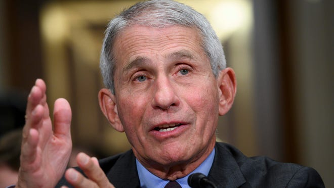 FILE - Dr. Anthony Fauci, director of the National Institute of Allergy and Infectious Diseases, testifies at the U.S. Senate Committee on Health, Education, Labor and Pensions' hearing on how the U.S. is responding to COVID-19, on March 3, 2020 in Washington, DC.