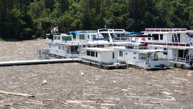Although much of Bridge Bay Marina is clear of debris, there are areas where it's clogged with driftwood and other debris, as shown on Wednesday.
