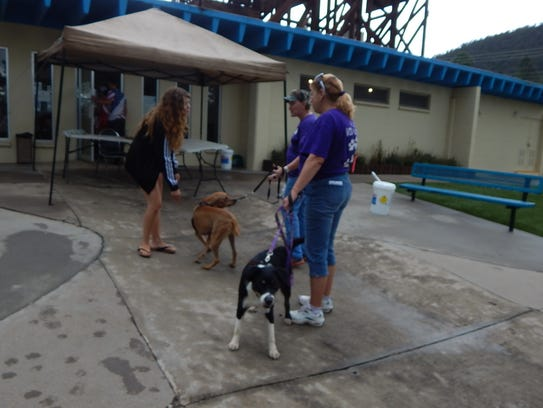 The event helped raise funds for the Humane Society