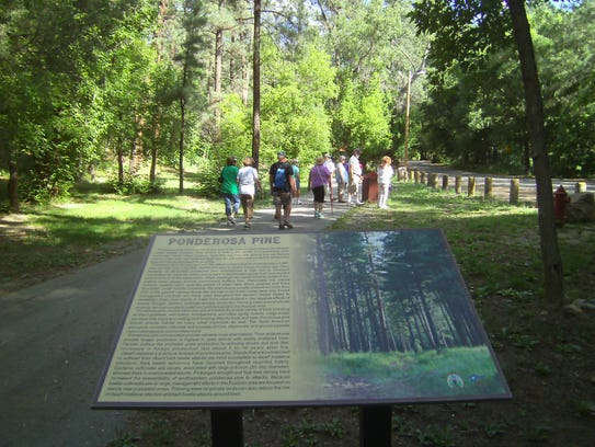 Interpretive plaques along Ruidoso River Trail enhance