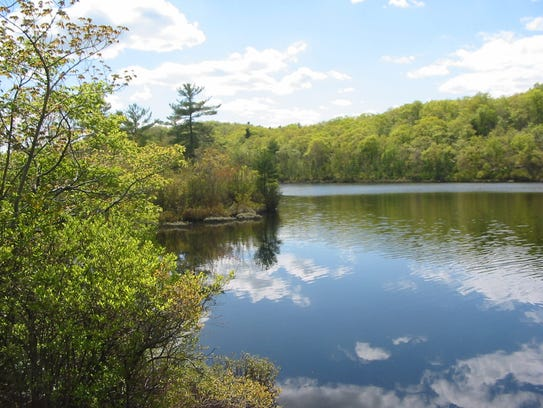 View of Suprise Lake in Abram S. Hewitt State Forest.