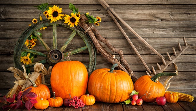 Thanksgiving autumnal still life with pumpkins and old wooden cartwheel