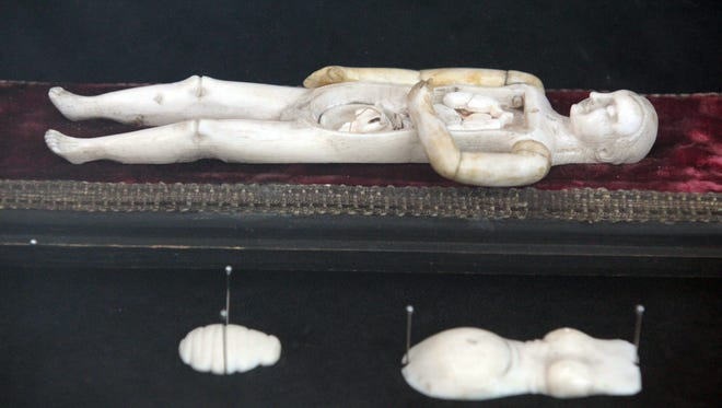 An ivory anatomical model of a female, dating from the 16th and 17th centuries, at the Dittrick Medical History Center and Museum at Case Western Reserve University in Cleveland.