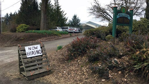 """This March 2, 2017, photo shows a sign saying """"Now Hiring"""" in front of Brooks Tree Farm near Salem, Ore. Farmers, nursery and winery owners and others who depend on immigrant labor are predicting a catastrophe as federal immigration agents focus on stepping up arrests of people who are in America illegally."""