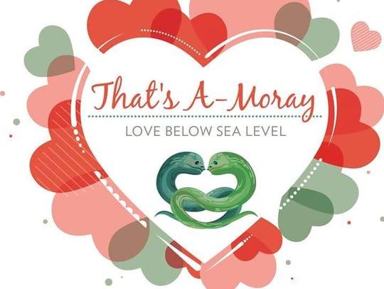 That's A-Moray