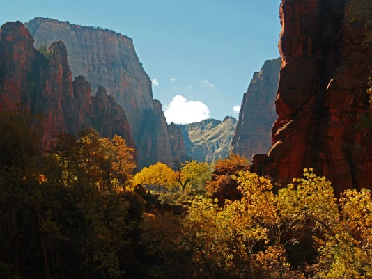 636434249901995474-Zion-NP-Robert-Caton-STE-fall-color-small.jpg