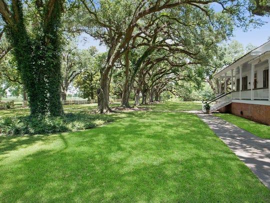 Oak trees line the property along side the home.