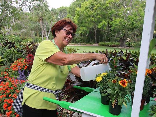 Volunteer Terry Van Loo waters some flowers at Heathcote