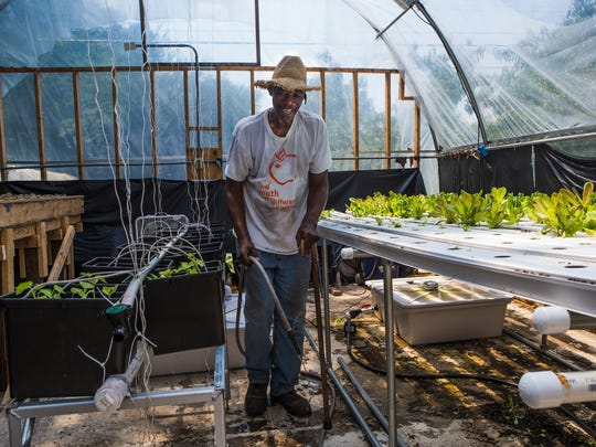 Mike Minnis, coordinator of Landmark Farmers Market, located at 2489 Carnes Avenue in Orange Mound, works in one of his hoop houses on Tuesday afternoon. The farmer's market is open 11 a.m. to 3 p.m. Monday through Saturday, and the pantry is open Monday through Friday from 8:30 a.m. to 9:30 a.m.