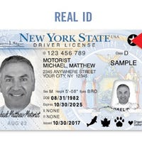 ny state drivers license renewal