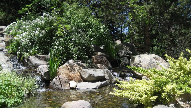 Waterfall in Honey's Garden, May Arboretum in Rancho San Rafael Regional Park