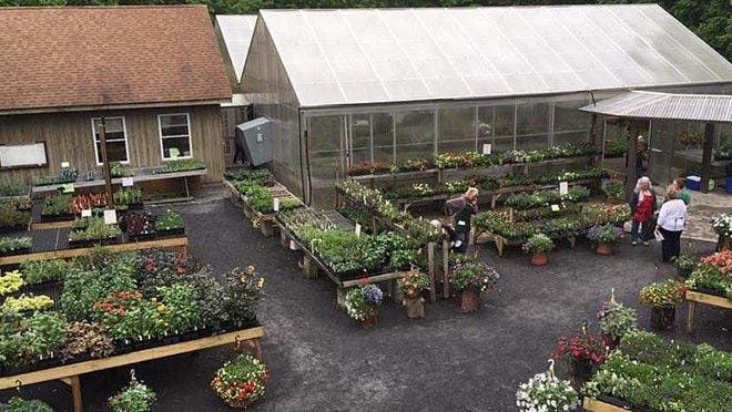 The Orange County Arboretum at Thomas Bull Memorial Park will still be having their annual Plant sale through May 23.