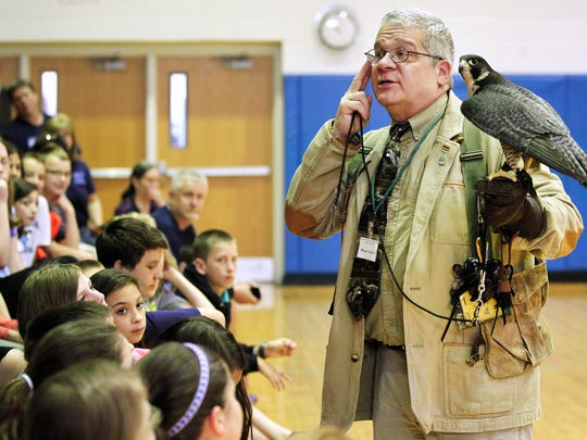 Paul Schnell holds a Peregrin falcon while giving a presentation of his group of raptors to a group of sixth graders at Ganada Middle School. Schnell and his wife Anne run the Institute for Environmental Learning in Hilton. They are relocating their enterprise to the southwest.