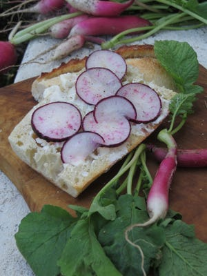 Slices of Purple Plum radishes on French bread with sweet butter, surrounded by whole radishes.