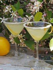 Meyer lemon martinis by Celia Casey.