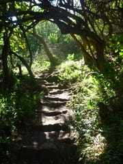 A gorgeous trail on BLM land awaits the Maui adventurer.