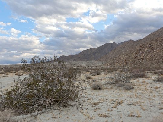 The City of Palm Springs is buying hundreds of acres of land including most of the area pictured here in the Chino Cone from the group Friends of the Palm Springs Mountains.
