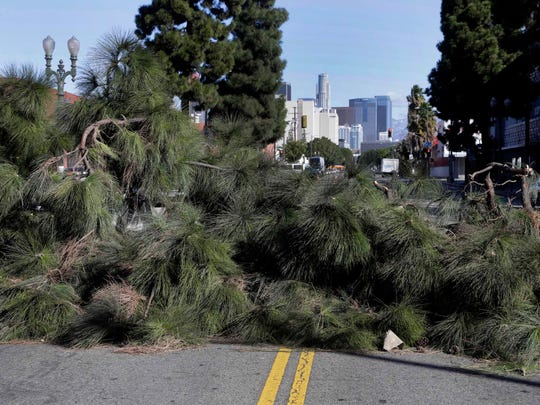 A large tree lies across a street after being blown over by high winds near downtown Los Angeles on Monday, Nov. 16, 2015. The winds followed a front that moved through California during the weekend, dropping rain and snow while lowering temperatures.