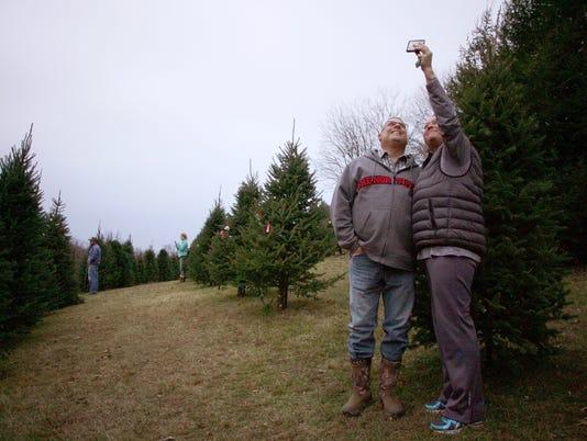Scheetz Tree Farm