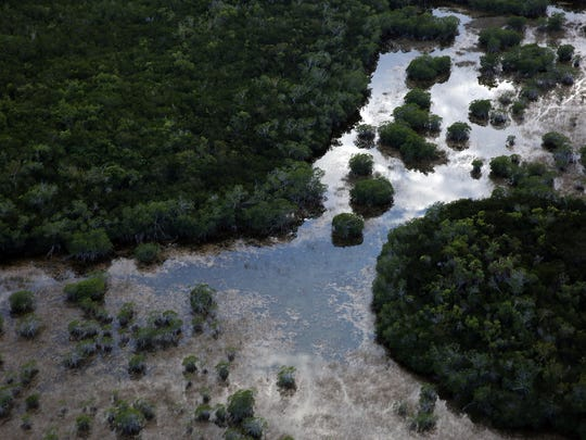 The Everglades National Park is under threat from rising