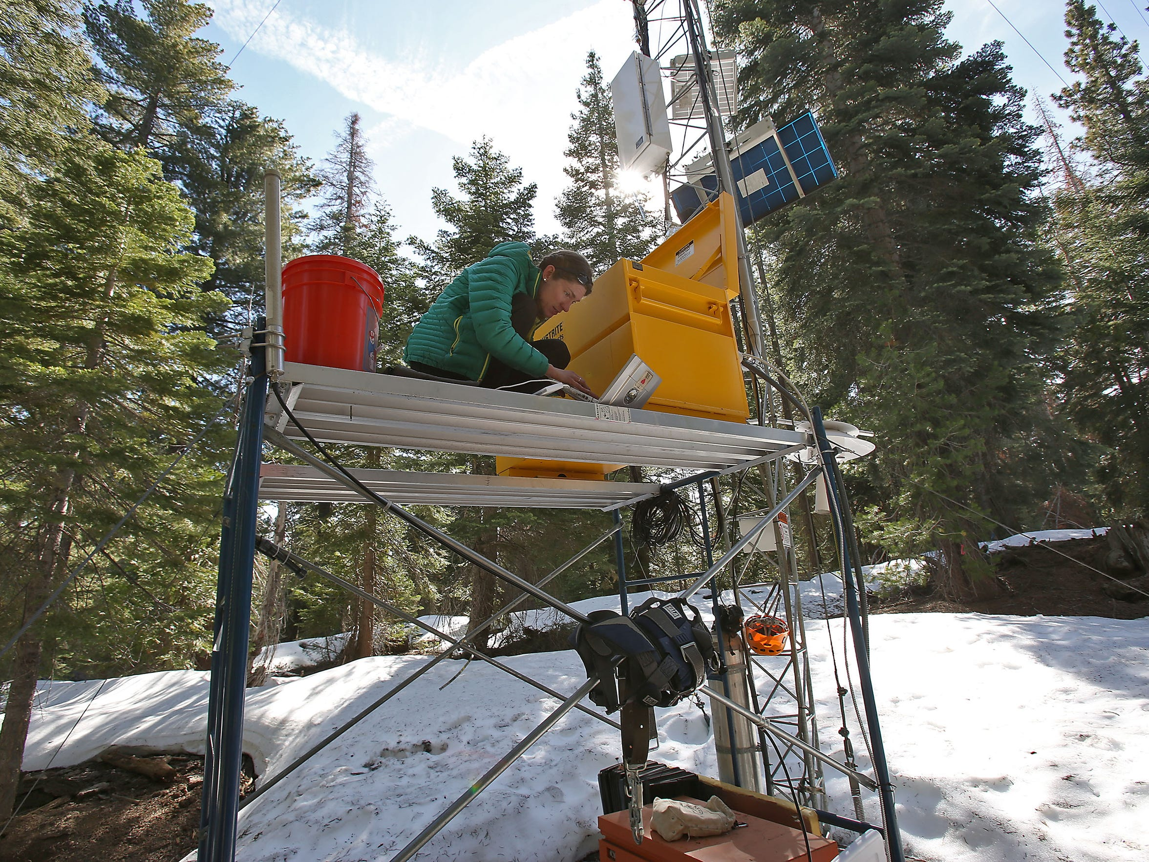 At a research site in the Sierra National Forest, Erin Stacy works with data from instruments that measure water vapor and carbon dioxide in the air, as well as other variables such as temperature, humidity and solar radiation.