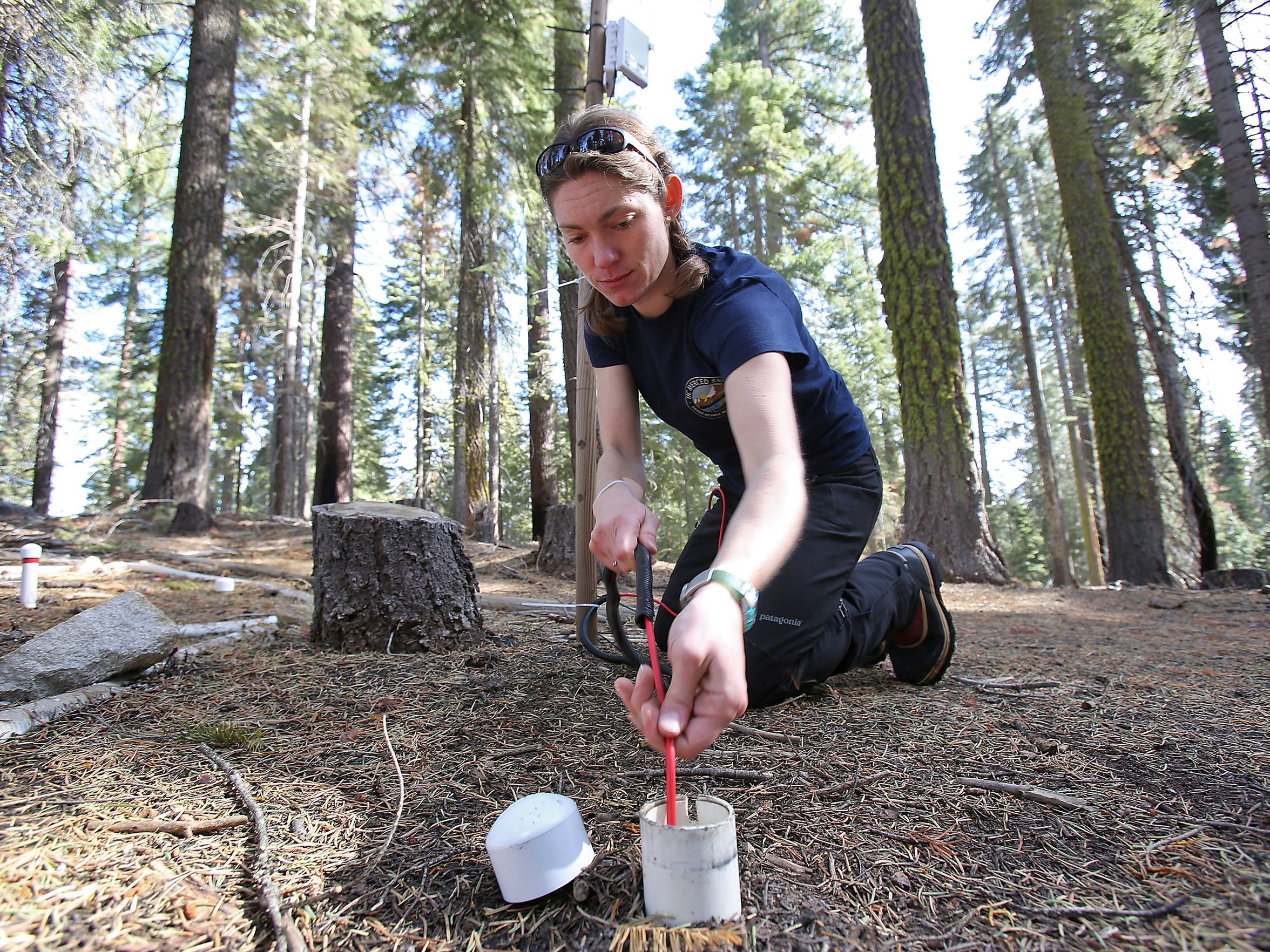 Erin Stacy, a scientist with the Sierra Nevada Research Institute at the University of California, Merced, manages research sites where instruments record information about the snowpack, water and the ecology of the forest.