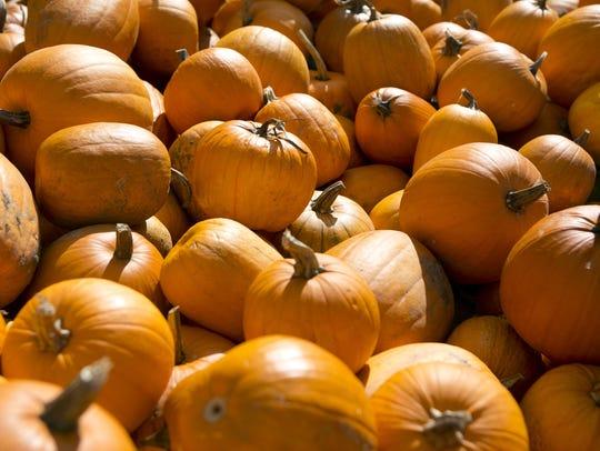 Altenburgs will open for the fall season 9 a.m. Saturday