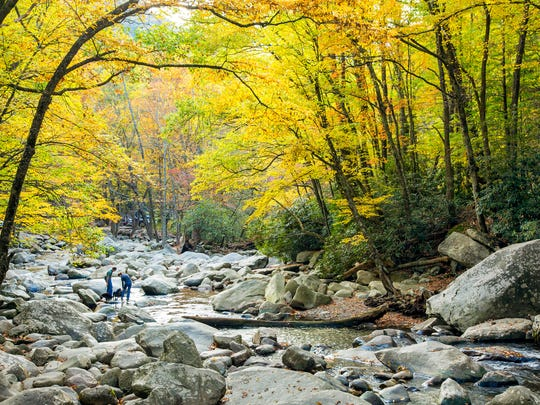 The Chimneys Picnic Area, on the Tennessee side of Newfound Gap Road, is a great place to picnic and see fall colors along the West Prong of the Little Pigeon River.